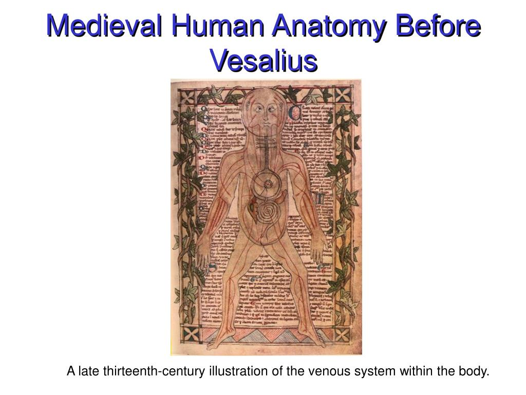 Medieval Human Anatomy Before Vesalius