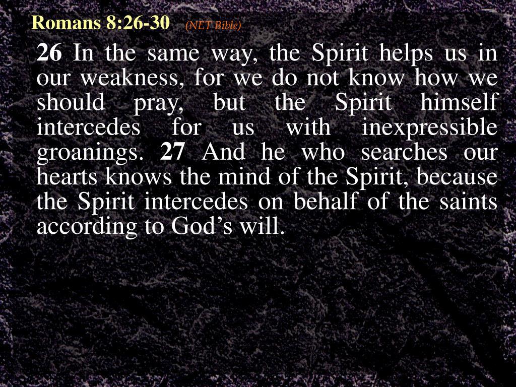Romans 8:26-30