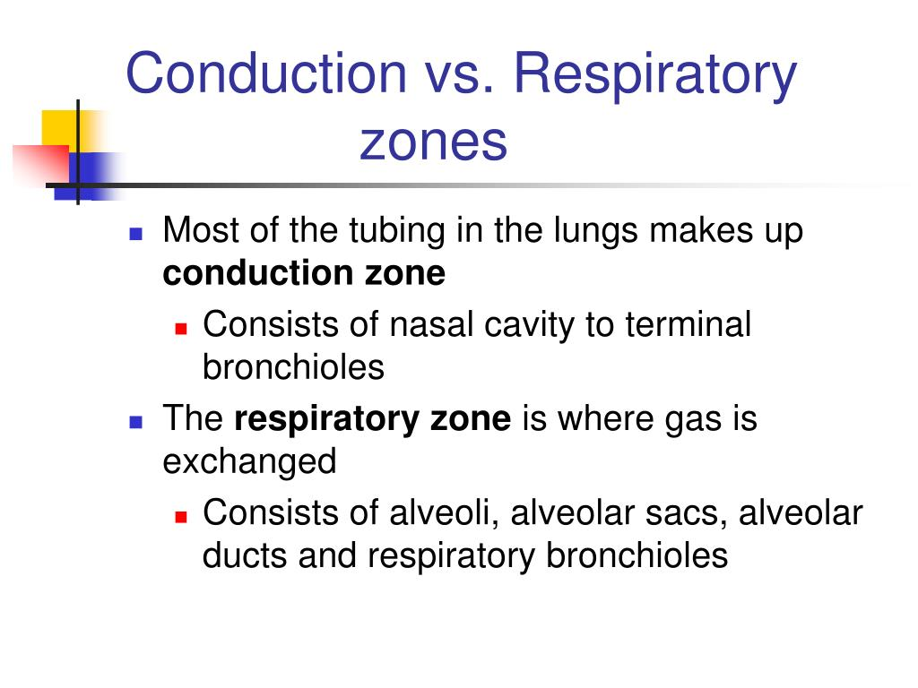 Conduction vs. Respiratory