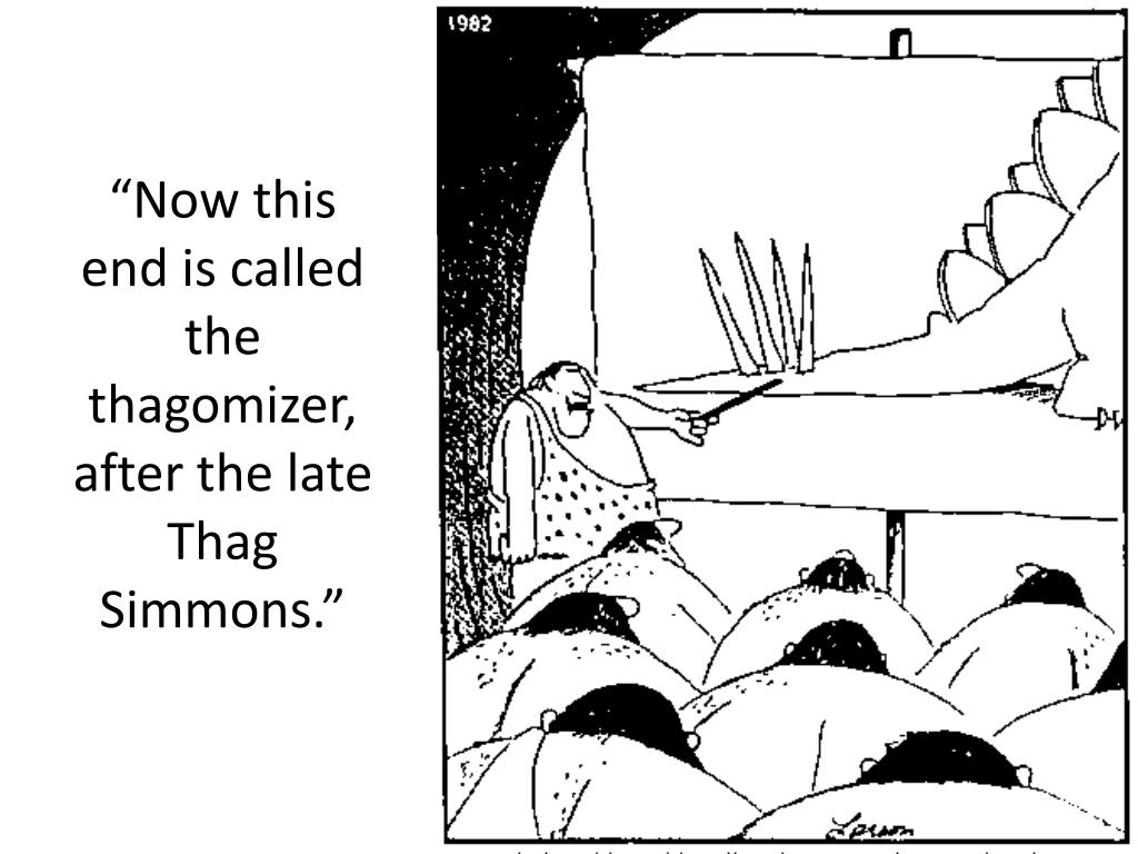 """""""Now this end is called the thagomizer, after the late Thag Simmons."""""""