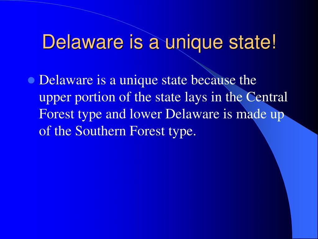 Delaware is a unique state!