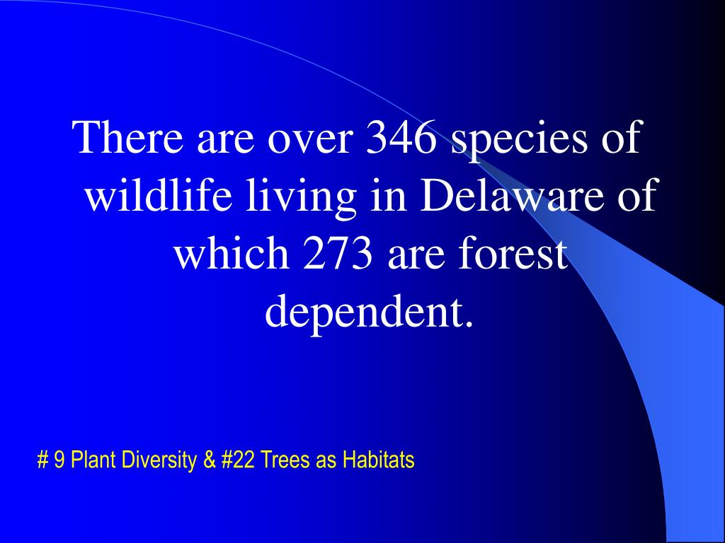 There are over 346 species of wildlife living in Delaware of which 273 are forest dependent.