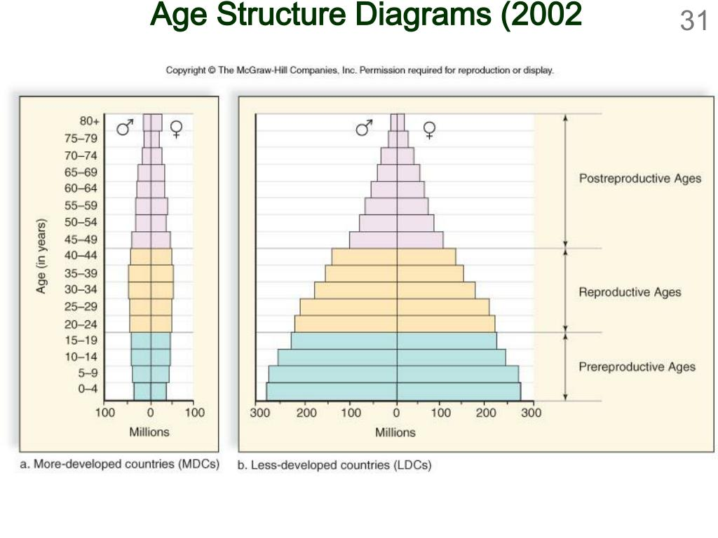 Age Structure Diagrams (2002