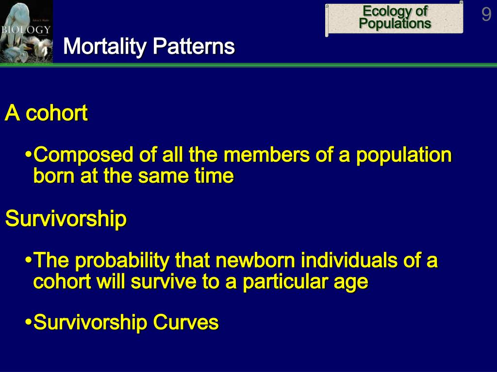 Mortality Patterns