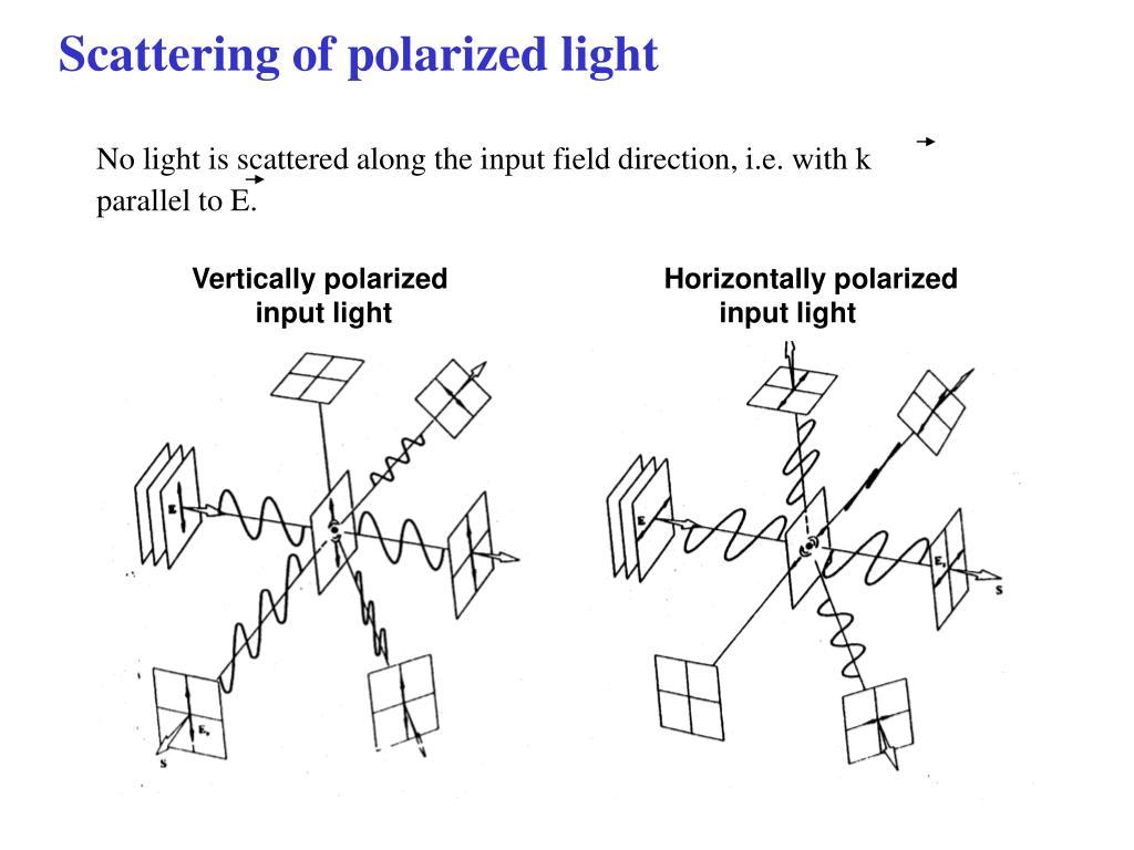 Scattering of polarized light