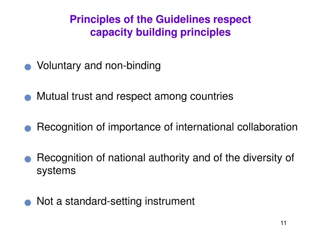 Principles of the Guidelines respect