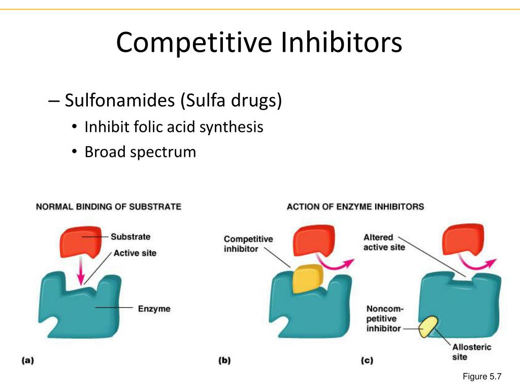 Competitive Inhibitors