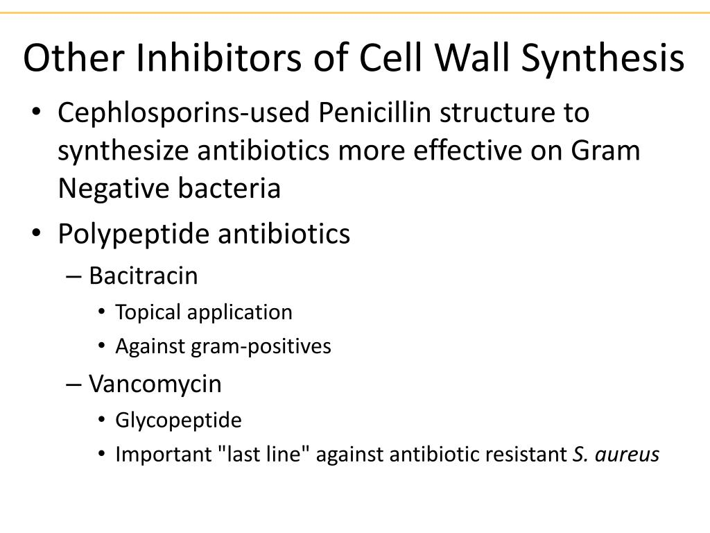 Other Inhibitors of Cell Wall Synthesis