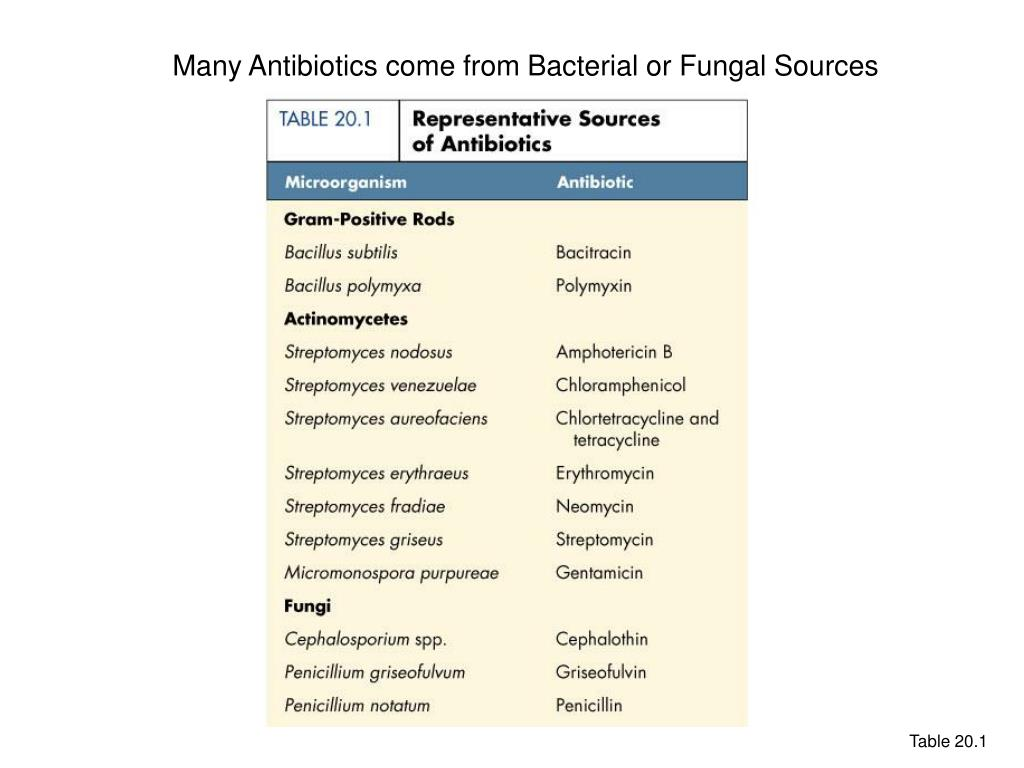 Many Antibiotics come from Bacterial or Fungal Sources