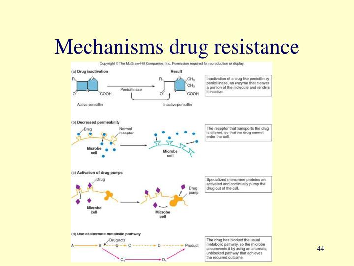 Mechanisms drug resistance