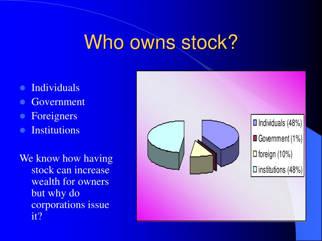 Who owns stock?