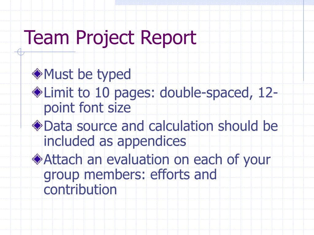 Team Project Report