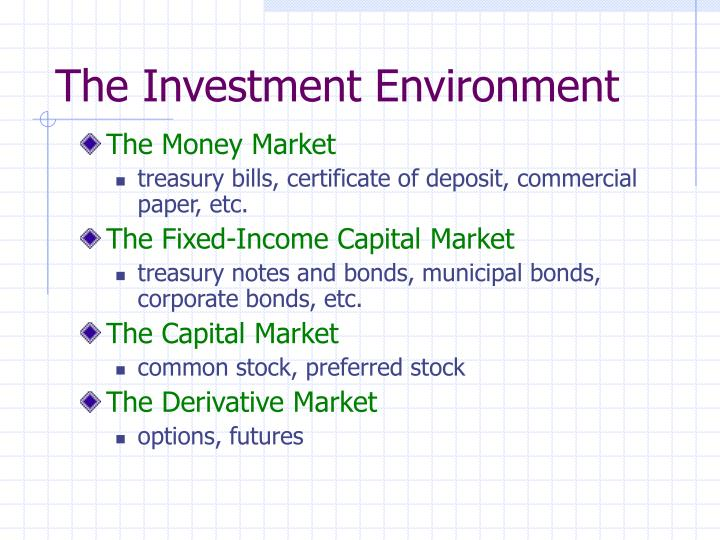 The investment environment l.jpg