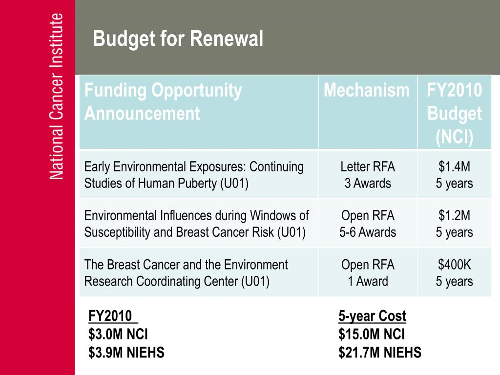Budget for Renewal