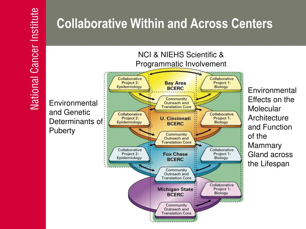 Collaborative Within and Across Centers