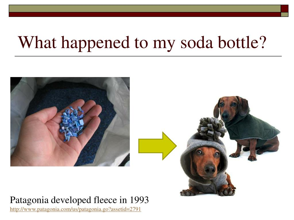 What happened to my soda bottle?