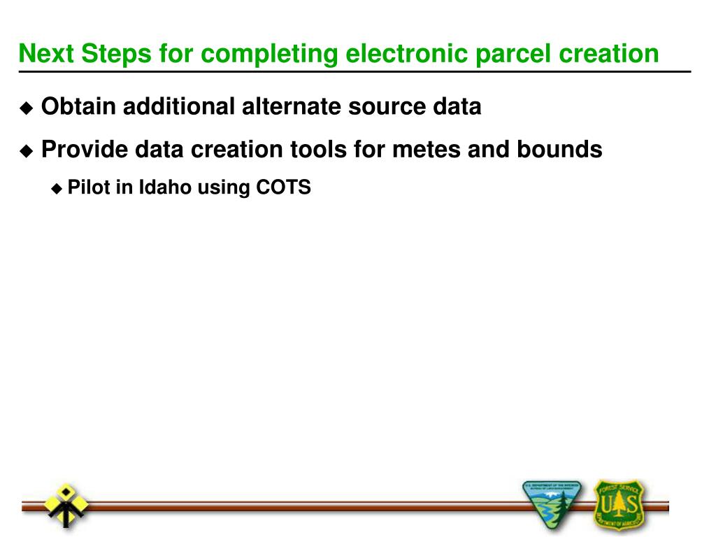 Next Steps for completing electronic parcel creation
