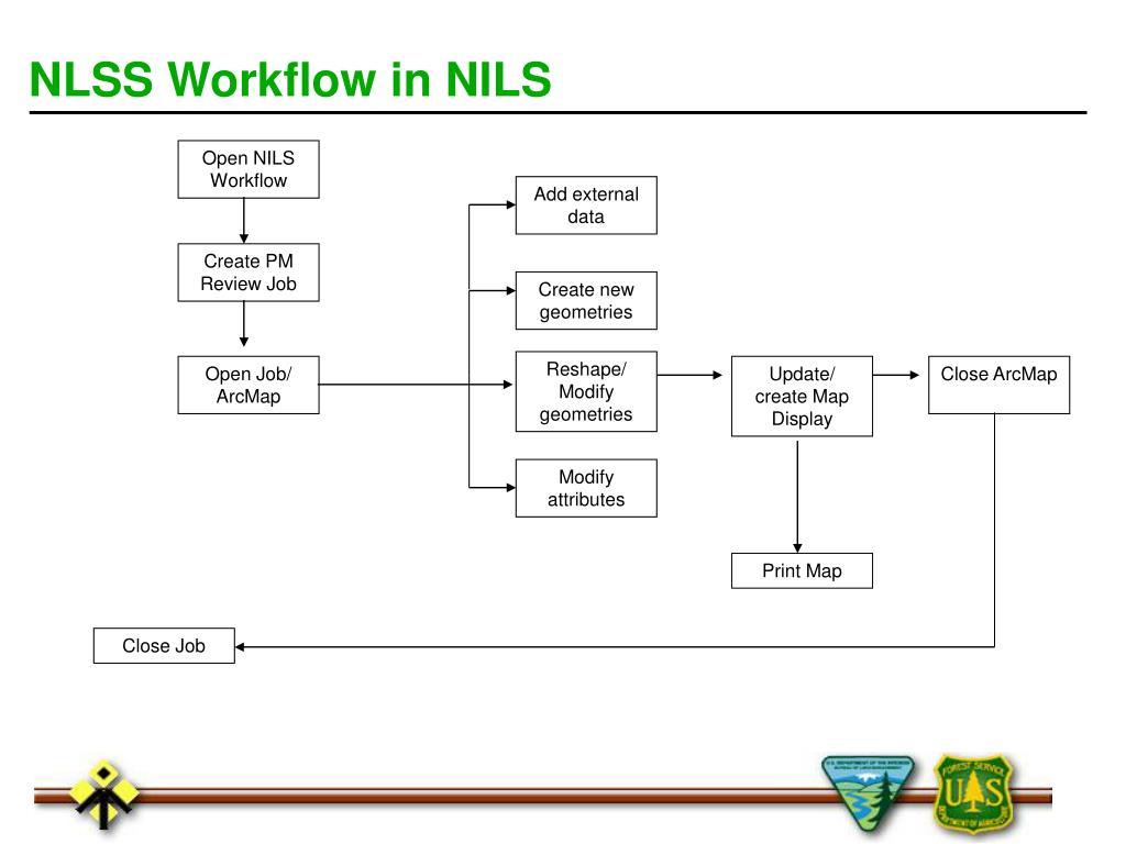 NLSS Workflow in NILS