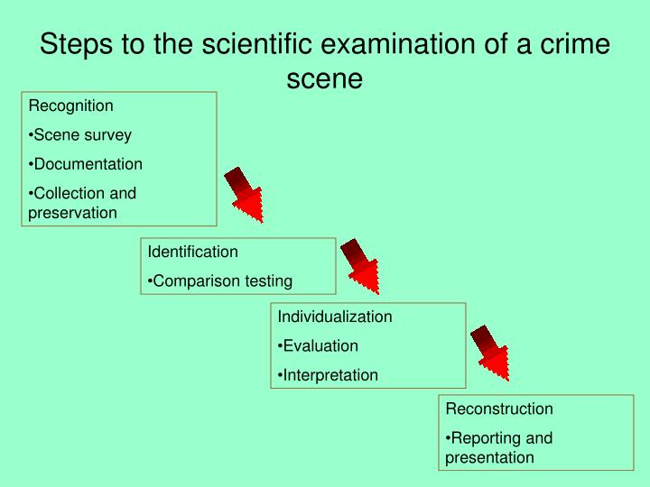 examination and documentation of the crime Case study: theft and murder unraveled by forensic  the physical examination of blood at the crime scene in the present case revealed the entire story of the.