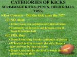 categories of kicks scrimmage kicks punts field goals trys19