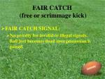 fair catch free or scrimmage kick24
