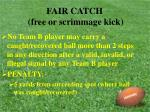 fair catch free or scrimmage kick29