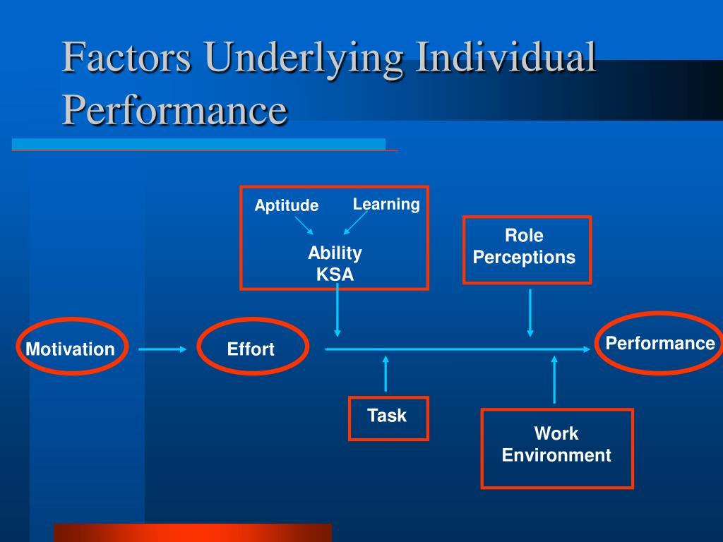 Factors Underlying Individual Performance