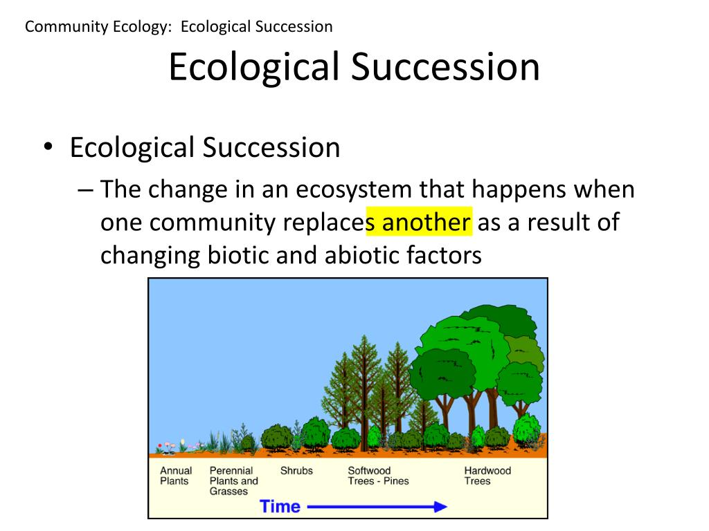 Community Ecology:  Ecological Succession