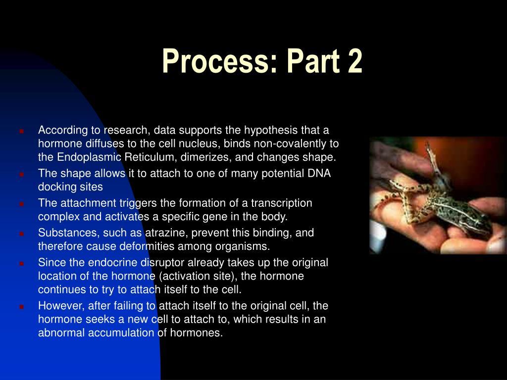 Process: Part 2