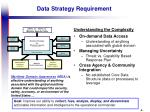 data strategy requirement