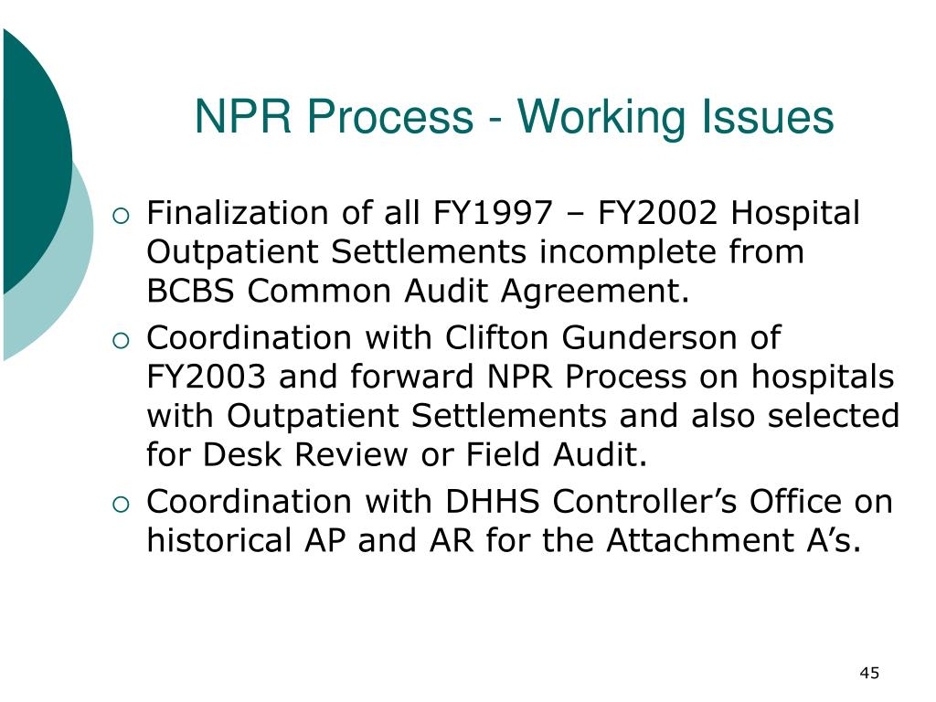 NPR Process - Working Issues