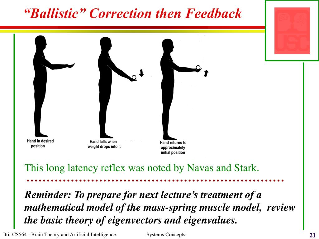 """Ballistic"" Correction then Feedback"