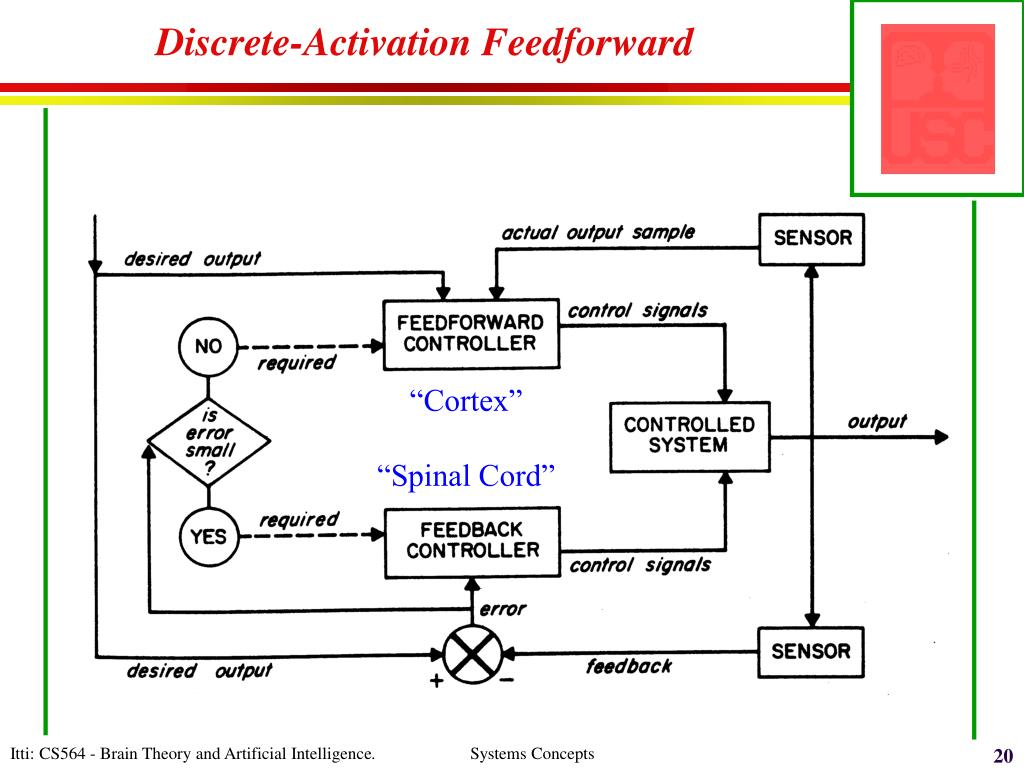Discrete-Activation Feedforward