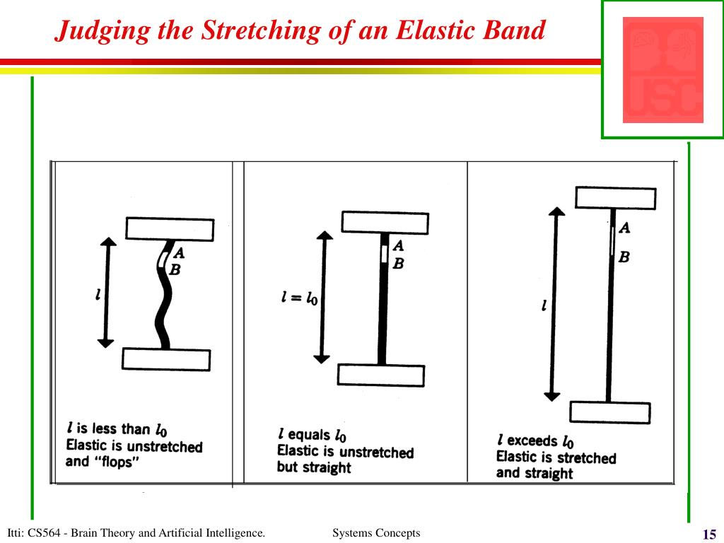 Judging the Stretching of an Elastic Band