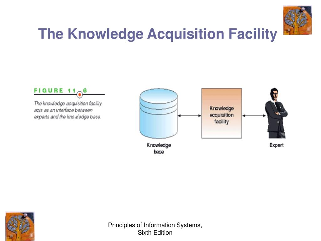 Principles Of Data Acquisition : Ppt specialized business information systems powerpoint