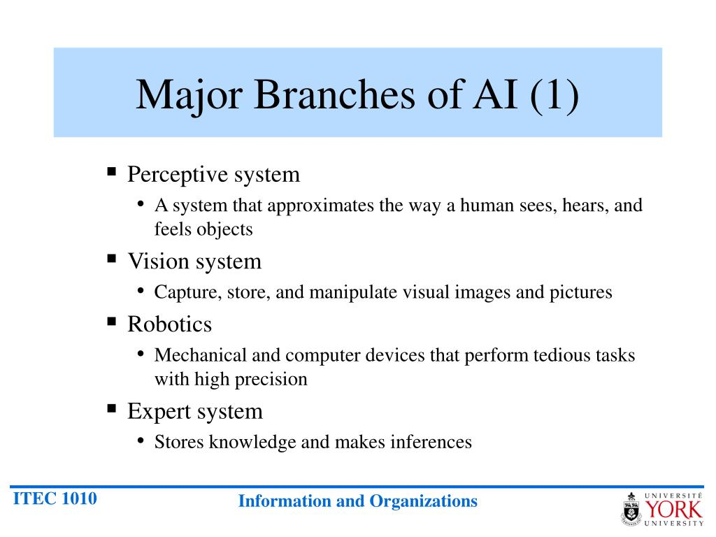 Major Branches of AI (1)