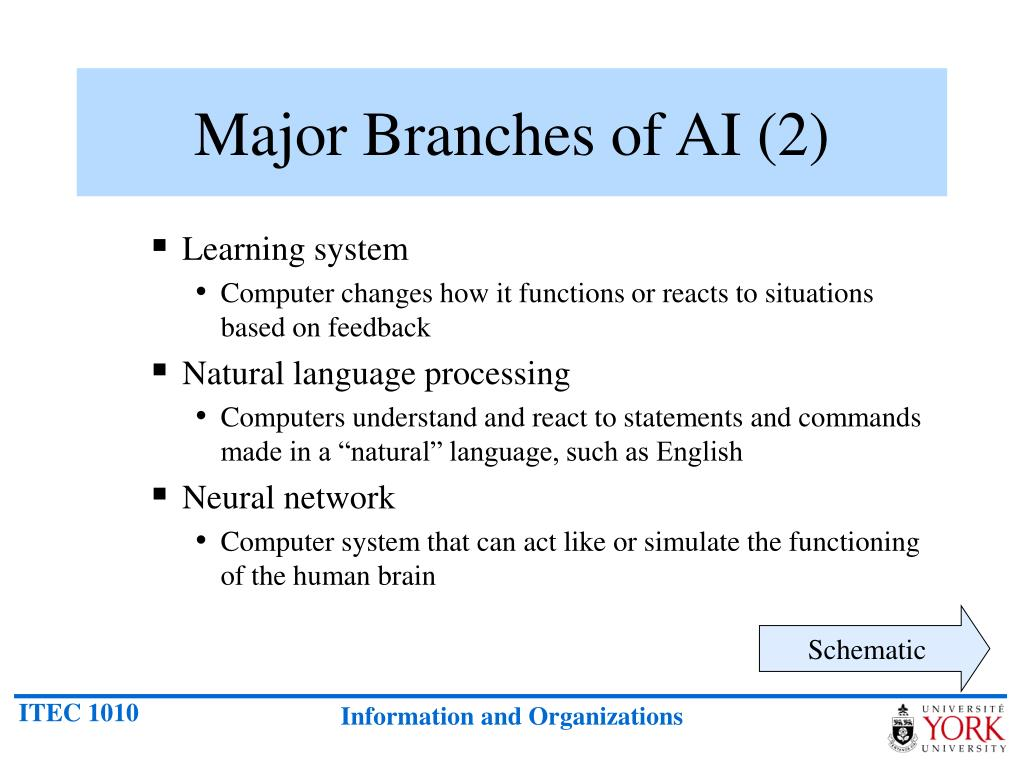 Major Branches of AI (2)