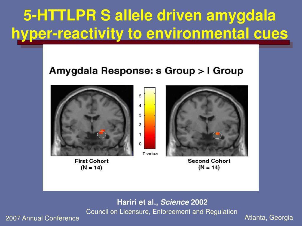 5-HTTLPR S allele driven amygdala