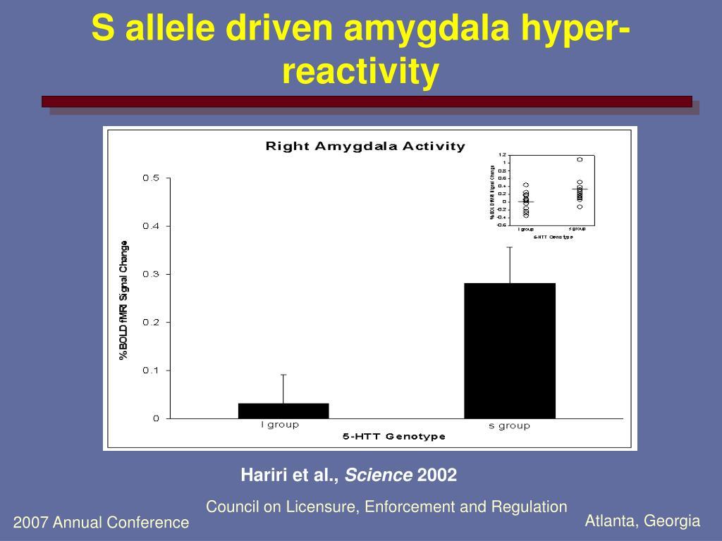 S allele driven amygdala hyper-reactivity
