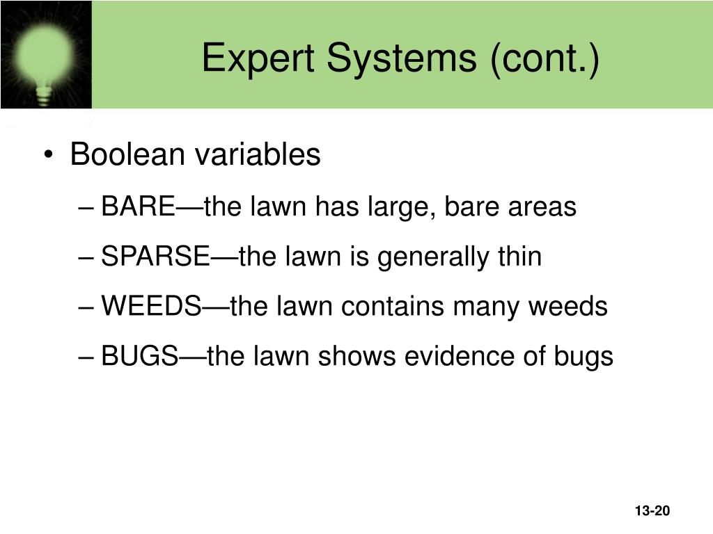 Expert Systems (cont.)