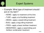 expert systems19