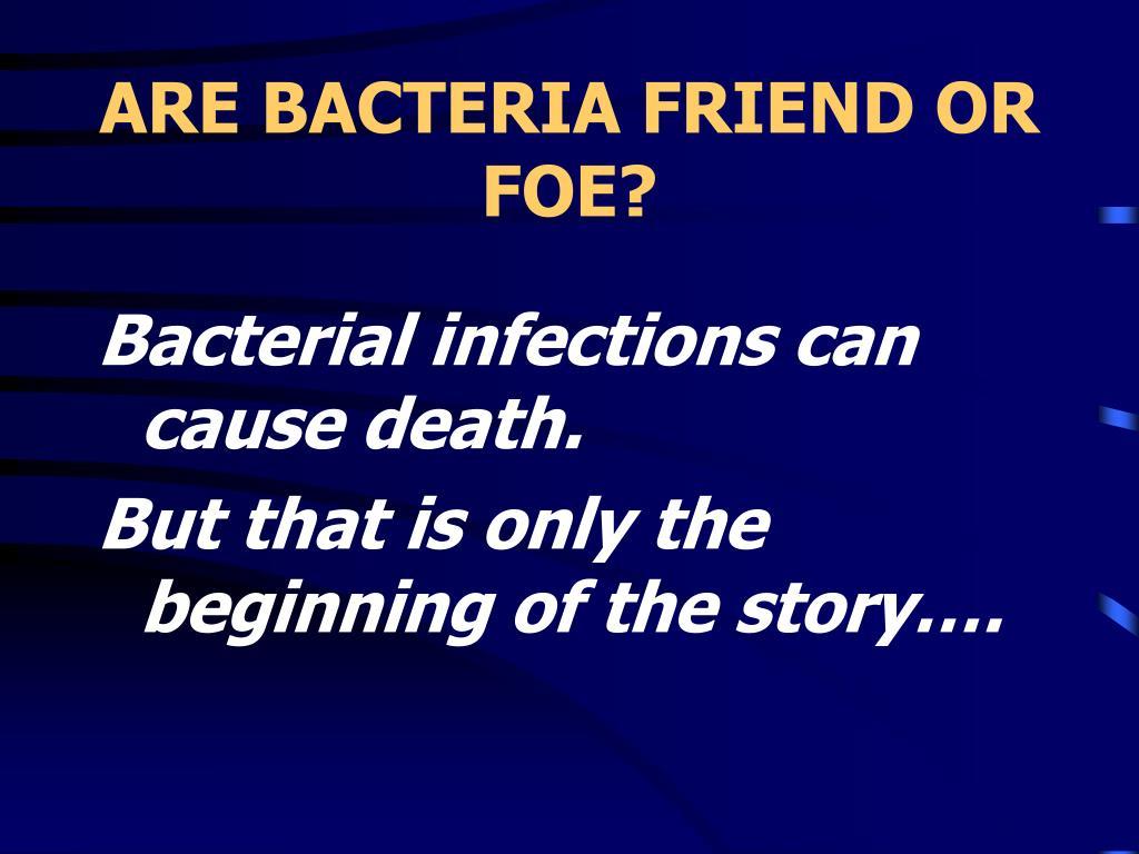ARE BACTERIA FRIEND OR FOE?