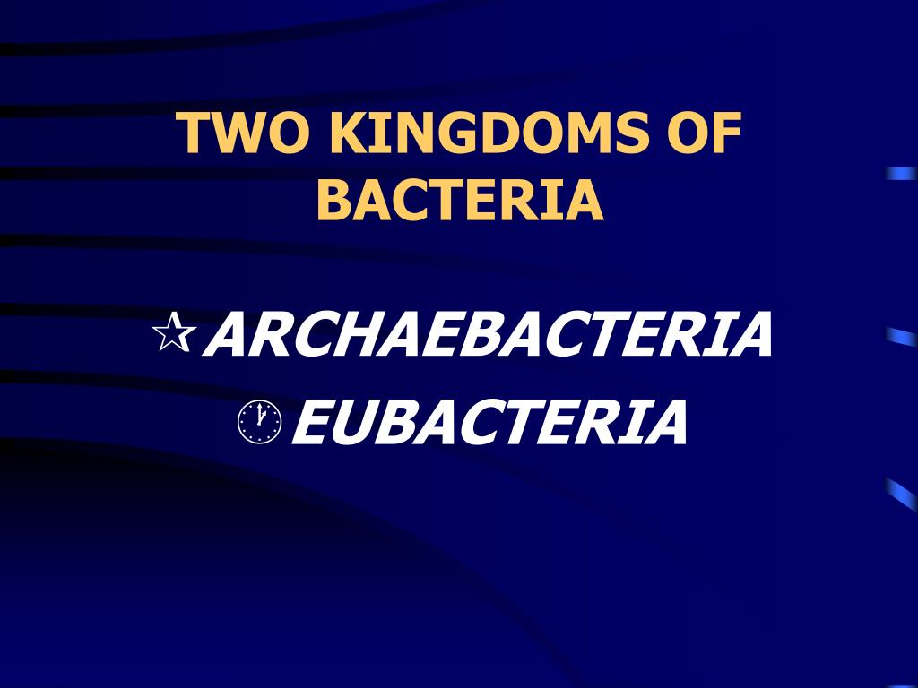TWO KINGDOMS OF BACTERIA
