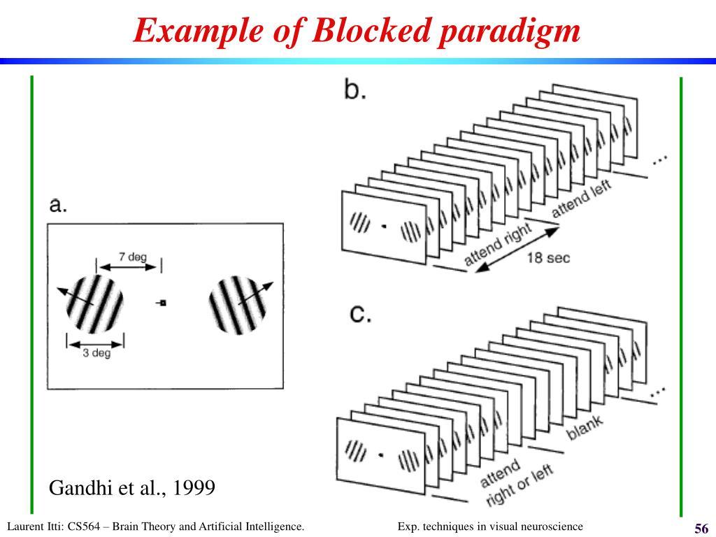 Example of Blocked paradigm