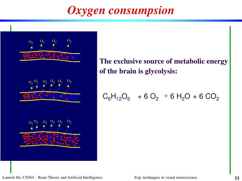 Oxygen consumpsion