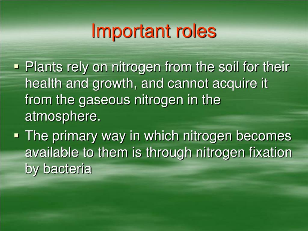 Important roles