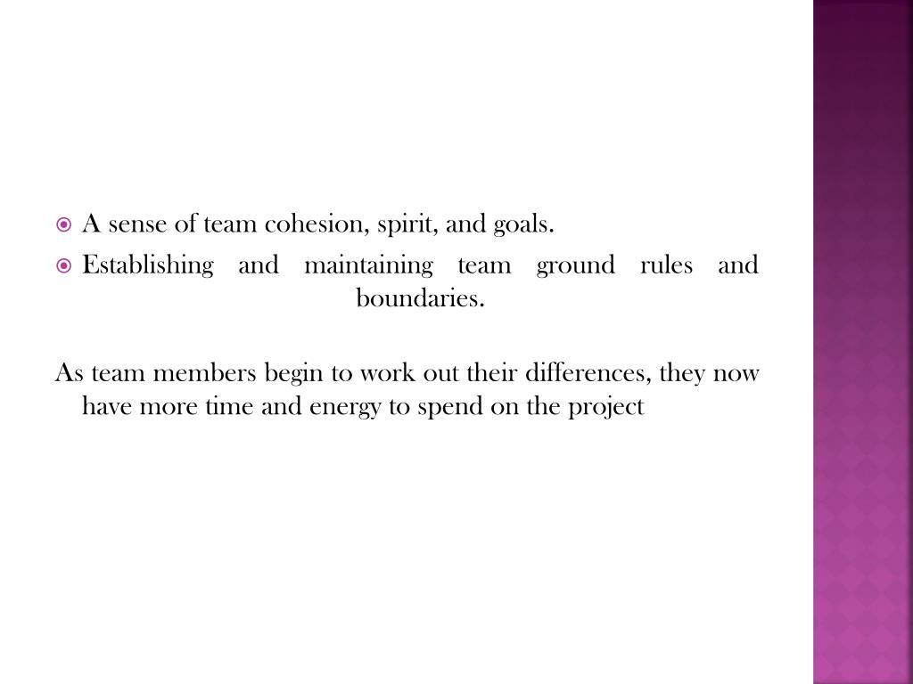 A sense of team cohesion, spirit, and goals.