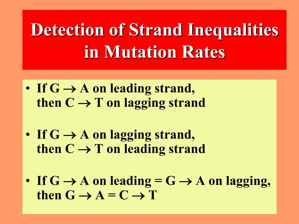 Detection of Strand Inequalities in Mutation Rates