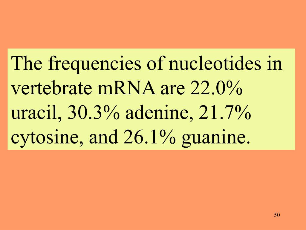The frequencies of nucleotides in vertebrate mRNA are 22.0% uracil, 30.3% adenine, 21.7% cytosine, and 26.1% guanine.