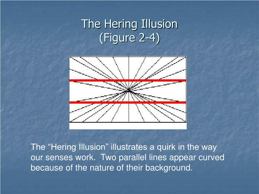 The Hering Illusion